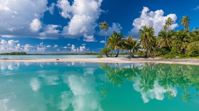 clouds, sea, French Polynesia, tropical, reflection, beach, nature, island, turquoise, summer, white, sand, palm trees, landscape