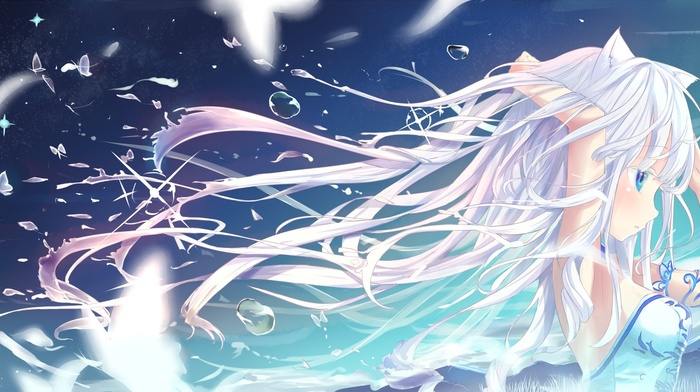 long hair, original characters, white hair, butterfly, anime girls, animal ears, Blade and Soul, blue eyes