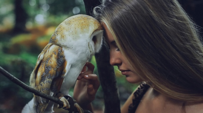 animals, Camille Rochette, owl, auburn hair, girl, birds