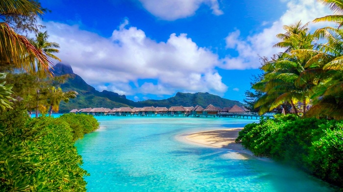 summer, palm trees, nature, French Polynesia, island, resort, sea, landscape, mountain, beach, Bora Bora, tropical