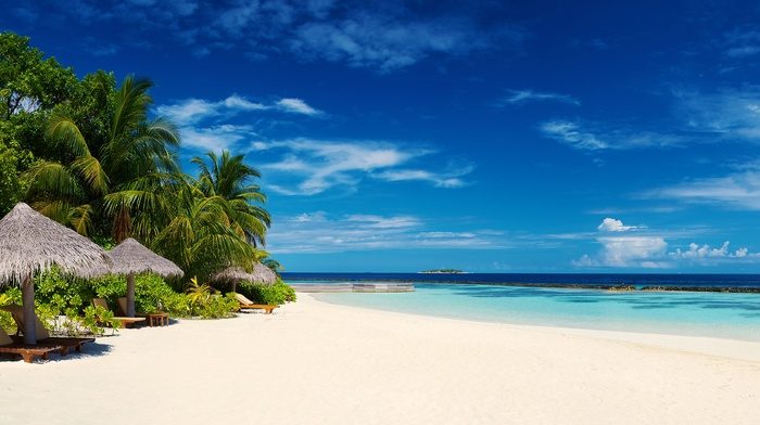 resort, tropical, Maldives, landscape, white, summer, beach, nature, island, sand, sea, palm trees