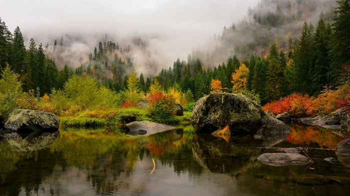 mountain, green, landscape, mist, fall, lake, yellow, water, leaves, forest, reflection, nature, pine trees, red