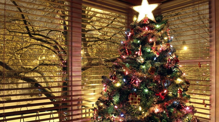 christmas lights, Christmas ornaments, trees