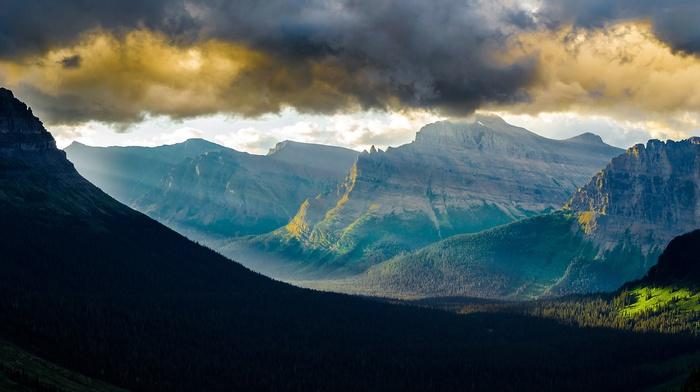 mist, clouds, forest, summer, nature, mountain pass, sunset, Glacier National Park, sun rays, landscape