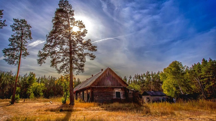 trees, clouds, Russia, landscape, forest, Sun, fall, nature, cabin, dry grass, abandoned