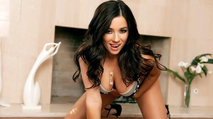 fireplace, open mouth, hanging boobs, kneeling, lingerie, stiletto, cleavage, model, girl, looking at viewer, pornstar, bra, long hair, Taylor Vixen, black heels, brunette, high heels, tongues, on the floor