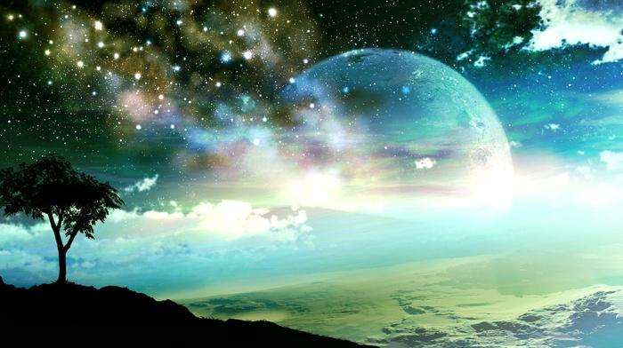 stars, trees, planet
