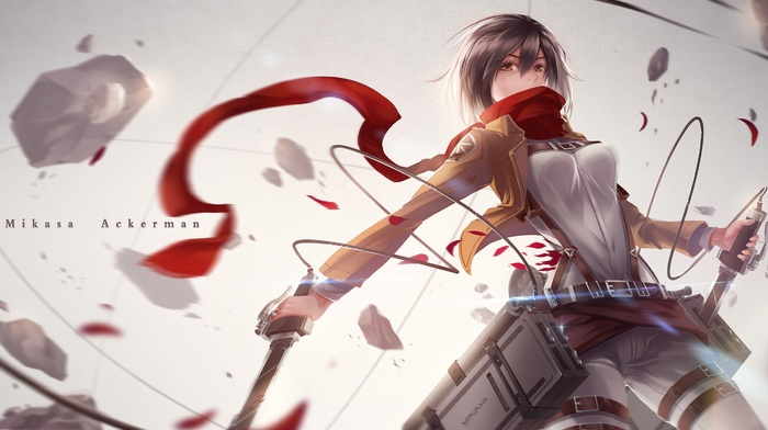 medieval, Shingeki no Kyojin, Mikasa Ackerman, anime, anime girls