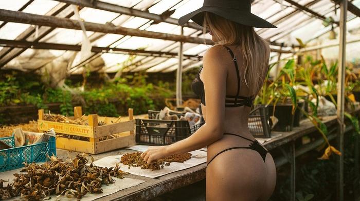ass, brunette, back, black bikinis, girl, model, hat, blonde