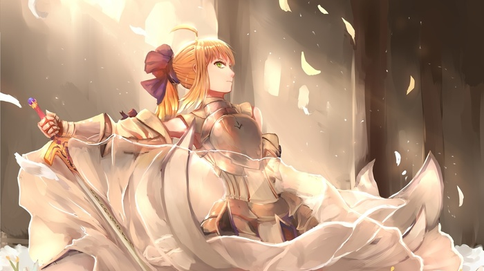 FateStay Night, sword, Saber Lily, fate series, anime
