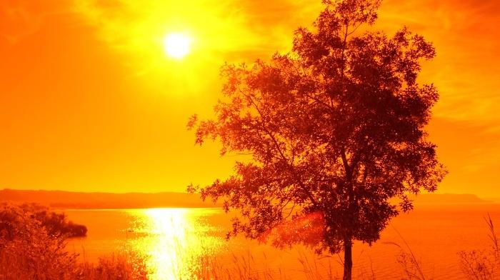 water, orange, lake, trees, landscape, Sun