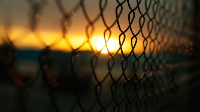 macro, photography, Sun, blurred, fence