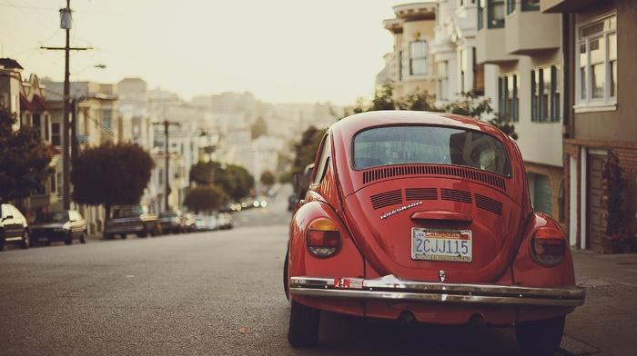 Volkswagen Beetle, photography, road, urban, car, depth of field, street, city, building