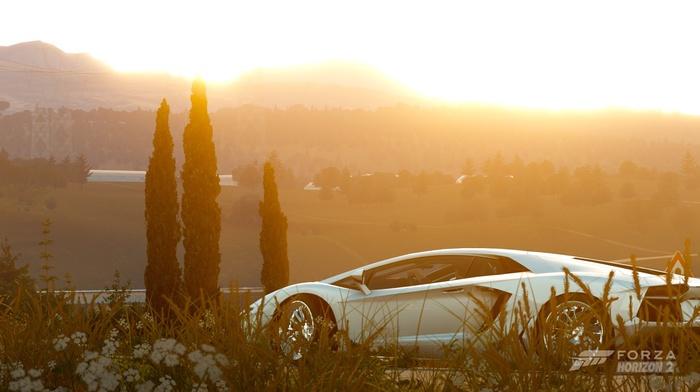 sunset, Forza Horizon 2, Xbox, Forza Hozion, Lamborghini Aventador, white cars, chrome, Lamborghini, nature, Forza Motorsport