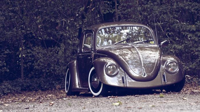 camber, Volkswagen, nature, custom, Volkswagen Beetle