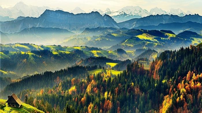 Switzerland, snowy peak, sunlight, landscape, nature, fall, cabin, morning, pine trees, mountains, mist, forest