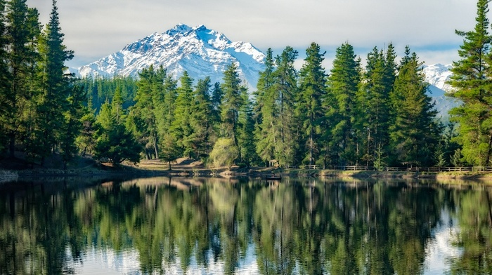 reflection, mountains, landscape, water, forest, snowy peak, pine trees, nature, Chile, fence