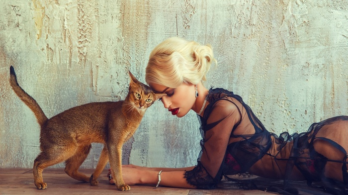 animals, wall, lingerie, cat, blonde, model, girl