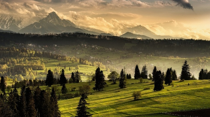 snowy peak, nature, mist, grass, village, Tatra Mountains, forest, landscape, clouds, Slovakia