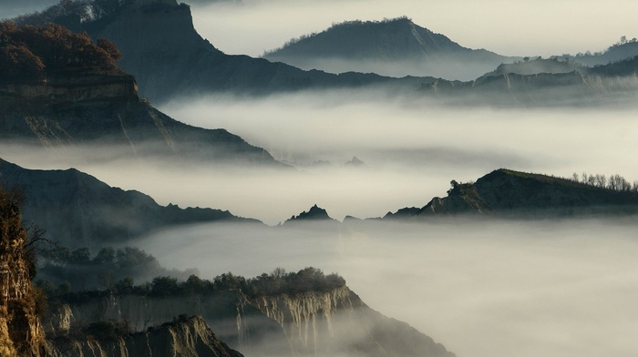 shrubs, mountains, nature, trees, daylight, morning, cliff, mist, landscape