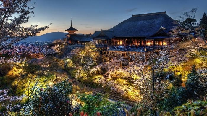 cityscape, urban, trees, photography, Kiyomizu Dera, evening, Japan, temple, plants