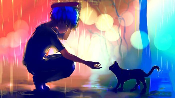 rain, cat