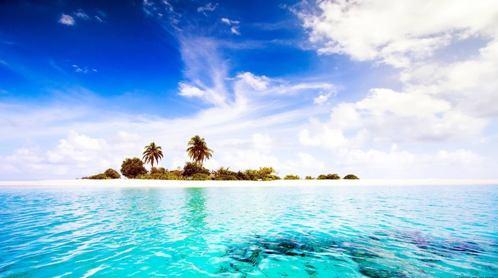 plants, island, photography, water, landscape, sea, palm trees, tropical
