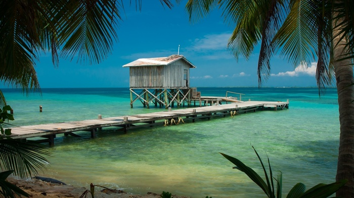 Barcelona, tropical, wooden surface, turquoise, sea, landscape, palm trees, Belize, beach, cabin, nature, water, dock