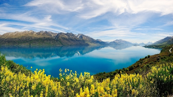 lake, nature, spring, yellow, mountains, reflection, wildflowers, water, New Zealand, clouds, turquoise, landscape