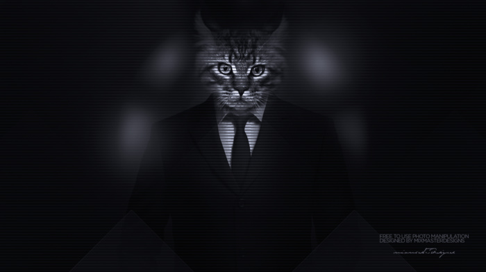 photo manipulation, Kitty, majestic casual channel, men, big cats, cat, classy, suits