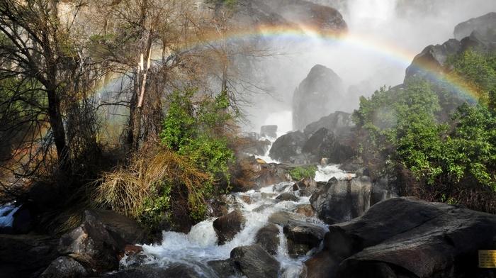 mist, rainbows, landscape, shrubs, Yosemite National Park, trees, mountains, nature, river