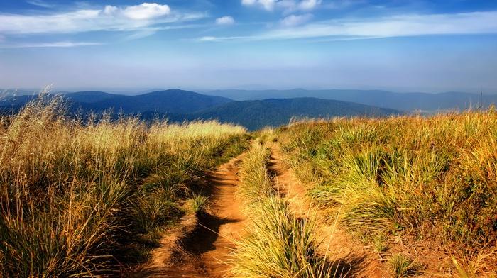 photography, grass, nature, path, plants, hills, landscape