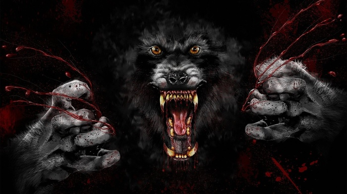 wolf, black background, digital art, blood, muzzles, fangs, animals, blood spatter, werewolves, yellow eyes