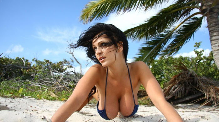 beach, Denise Milani, bikini, natural boobs, big boobs, brunette
