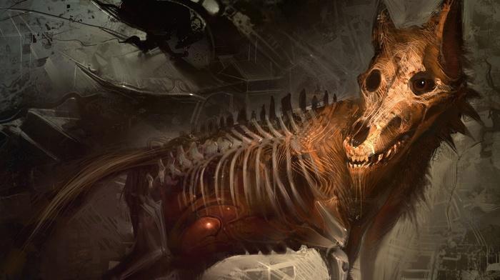 skeleton, animals, bones, wolf, digital art, creature, abstract, skull, creepy, ribs