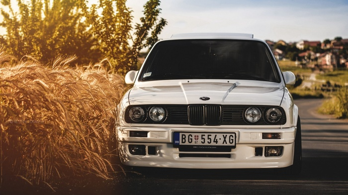 wheat, white, BMW E30, white cars, BMW, car, vehicle
