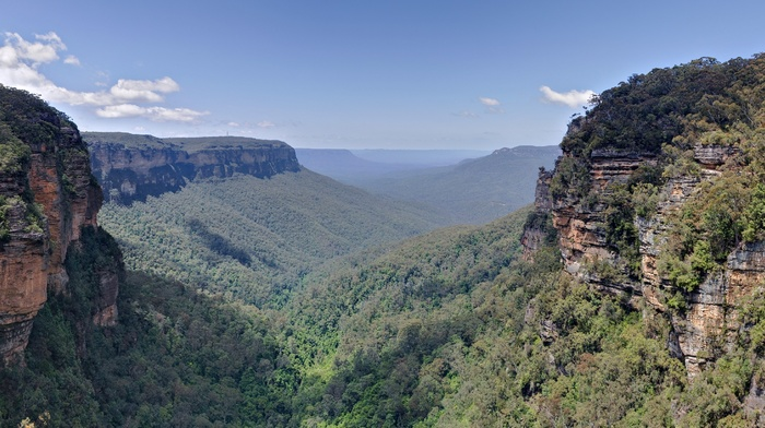 cliff, Australia, landscape, valley, plants, photography, nature