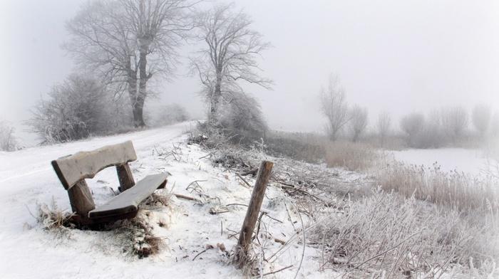 trees, bench, snow, seasons, landscape, winter