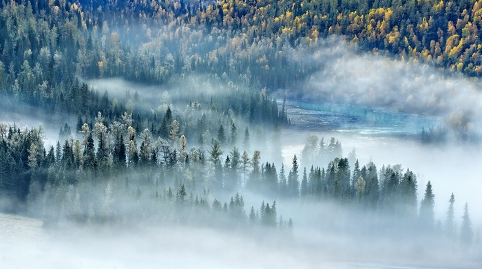 fall, forest, morning, river, landscape, sunlight, China, mist, trees, nature