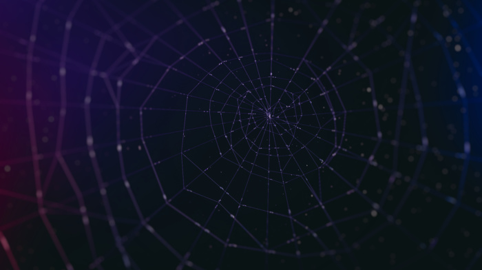 spider, abstract