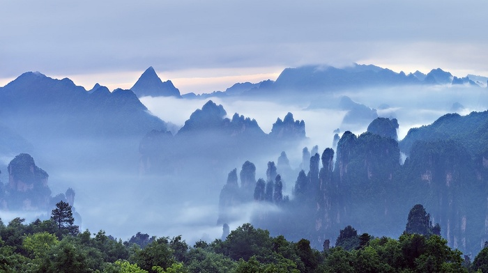 morning, trees, clouds, forest, mountains, landscape, mist, China, Guilin, nature