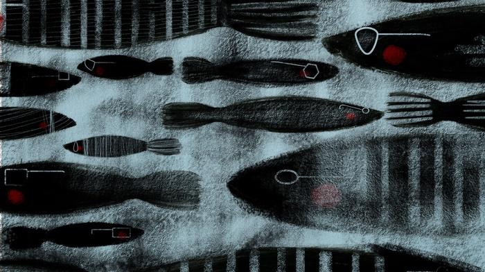 stripes, fish, animals, digital art, artwork, illustration, simple background, glasses, drawing