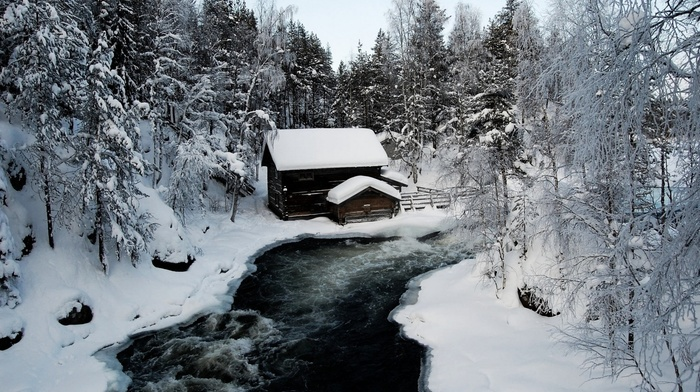 nature, trees, ice, river, cabin, snow
