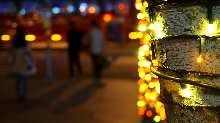 christmas lights, depth of field, bokeh, trees, city