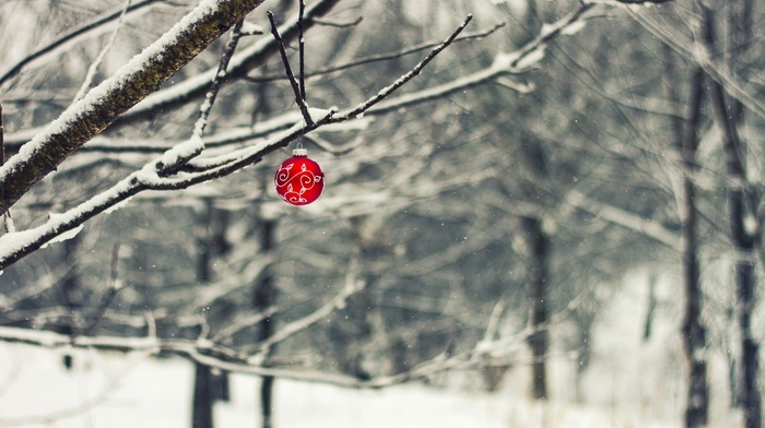 trees, winter, depth of field, branch, snow, Christmas ornaments