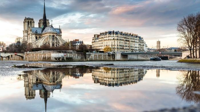 Notre, dame, Paris, France