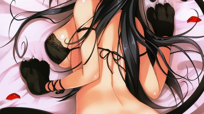 bra, underboob, anime, animal ears, anime girls, flowers, rose, black hair, yellow eyes, original characters, cameltoe, flower in hair, Tomose Shunsaku, stockings, nekomimi, cat girl, cat, tail, ass