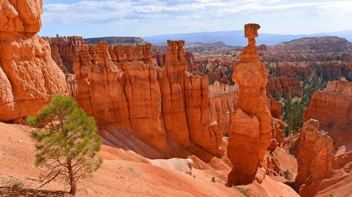 nature, landscape, canyon, rock