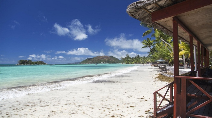 Seychelles, white, sand, nature, palm trees, beach, summer, sea, island, bungalow, tropical, landscape