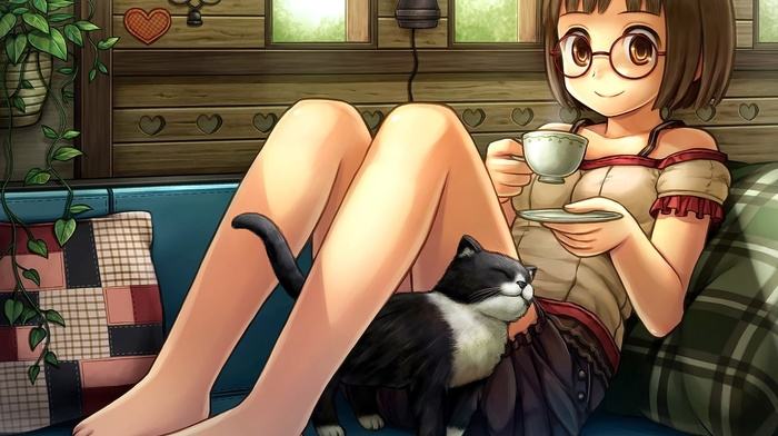 anime, cup, glasses, meganekko, original characters, anime girls, couch, cat